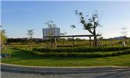 Cần mua đất diện tích lớn từ 700m2-4000m2 các quận ven rìa thành phố, LH 0909 902 549